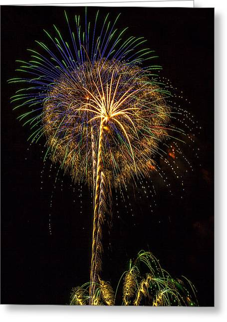 4th July #13 Greeting Card by Diana Powell