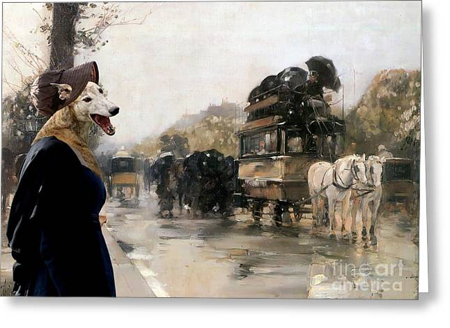 Greyhound Art Canvas Print  Greeting Card by Sandra Sij