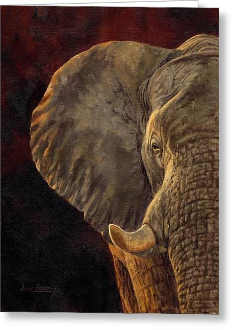 African Elephant Greeting Card by David Stribbling