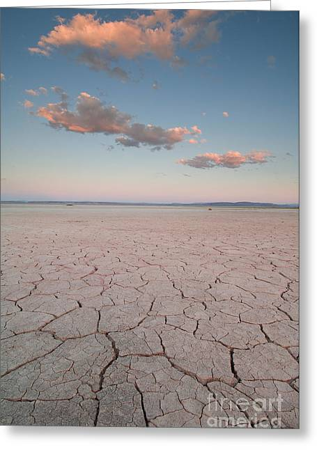Alvord Desert, Oregon Greeting Card by John Shaw