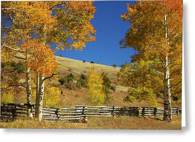 Autumn Cedar Mountain Utah Greeting Card