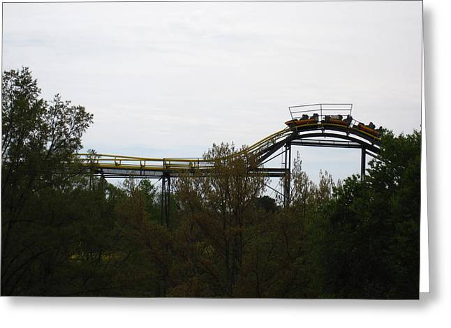 Busch Gardens - 12123 Greeting Card by DC Photographer