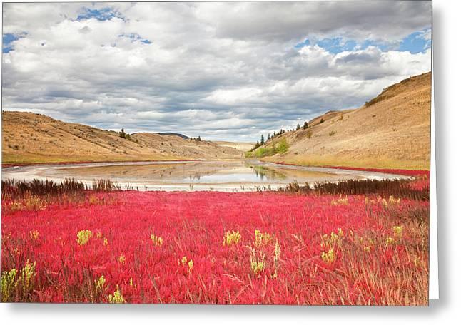 Canada, British Columbia, Kamloops, Lac Greeting Card by Jaynes Gallery