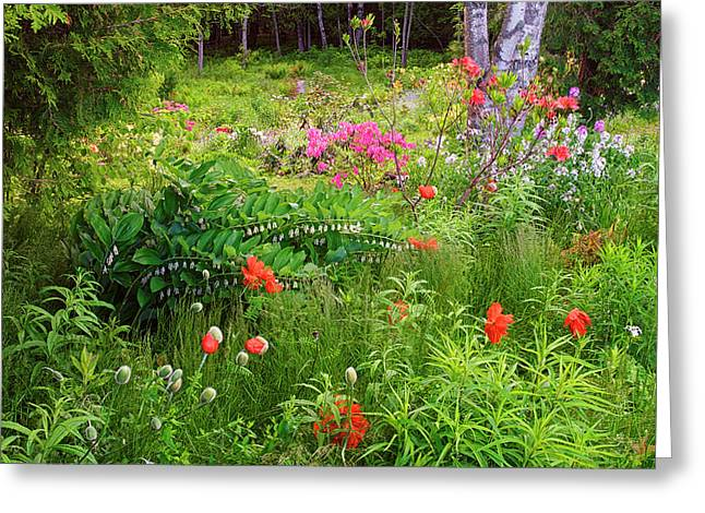 Canada, New Brunswick, Garden And Forest Greeting Card