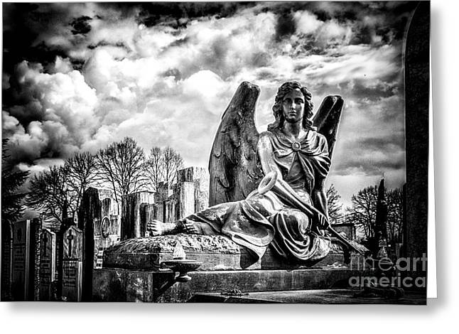 Cemetery Of Mantova Greeting Card by Traven Milovich