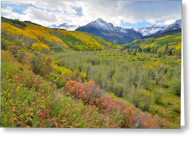 Dallas Creek Road Fall Colors Greeting Card