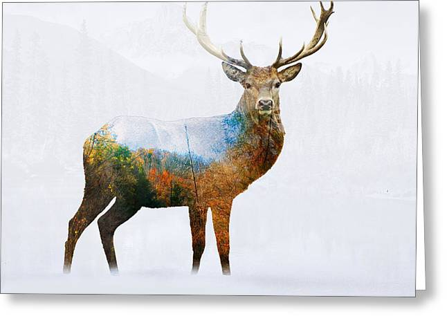 Deer Greeting Card by Mark Ashkenazi