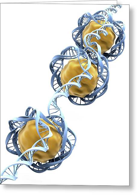 Dna Packaging Greeting Card by Alfred Pasieka