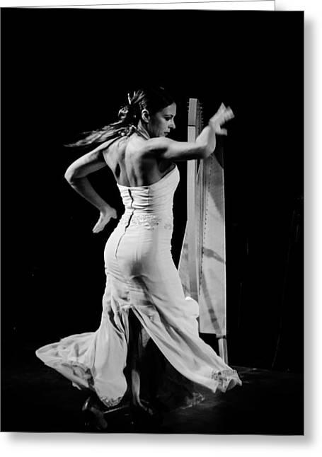 Flamenco Greeting Card by Andrea Mazzocchetti