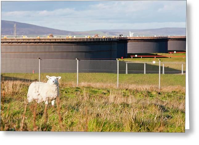 Flotta Oil Terminal Greeting Card