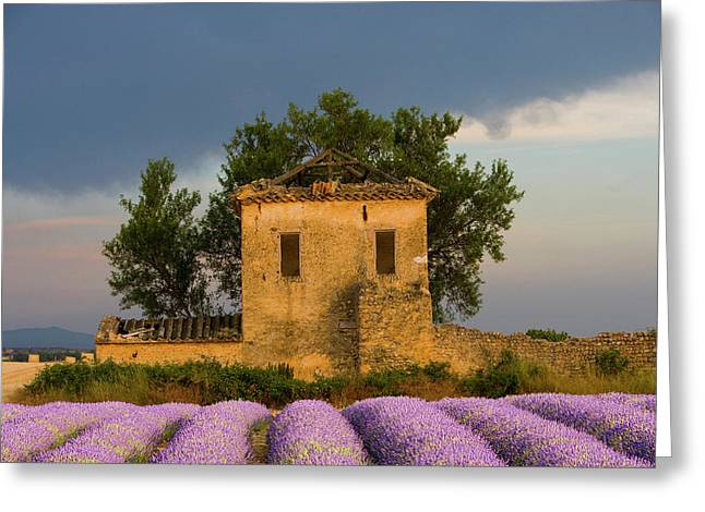 France, Provence Greeting Card by Jaynes Gallery