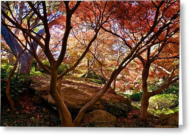 Greeting Card featuring the photograph Japanese Gardens by Ricardo J Ruiz de Porras