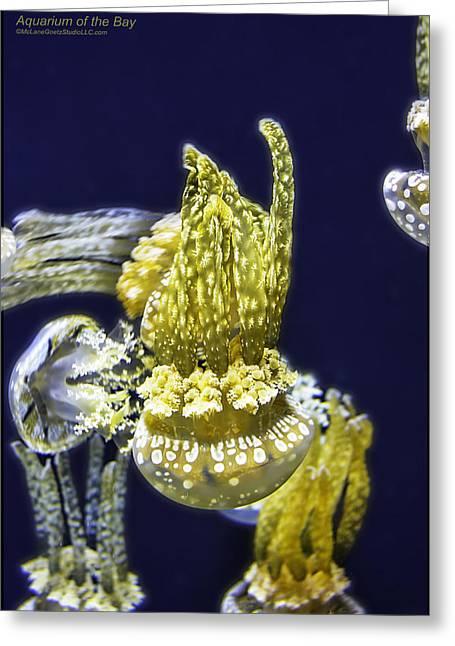 Jellyfish Of Aquarium Of The Bay San Francisco Greeting Card by LeeAnn McLaneGoetz McLaneGoetzStudioLLCcom