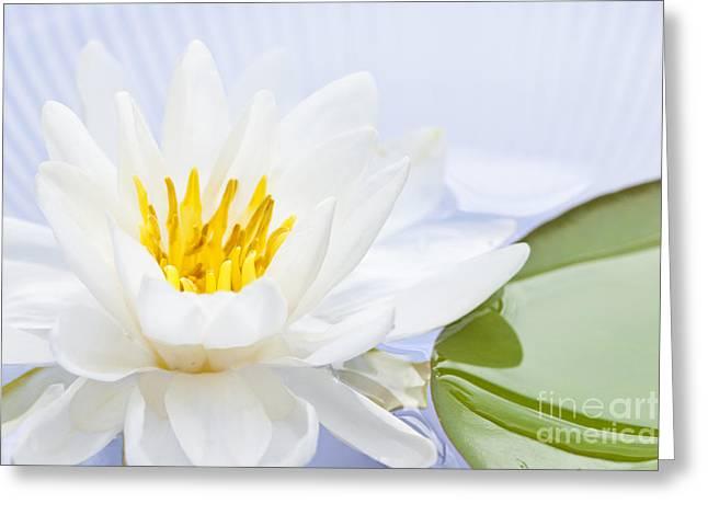 Lotus Flower Greeting Card by Elena Elisseeva