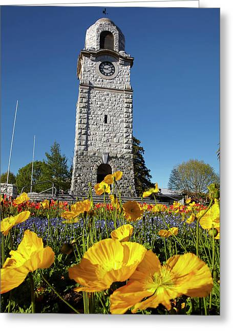 Memorial Clock Tower, Seymour Square Greeting Card by David Wall