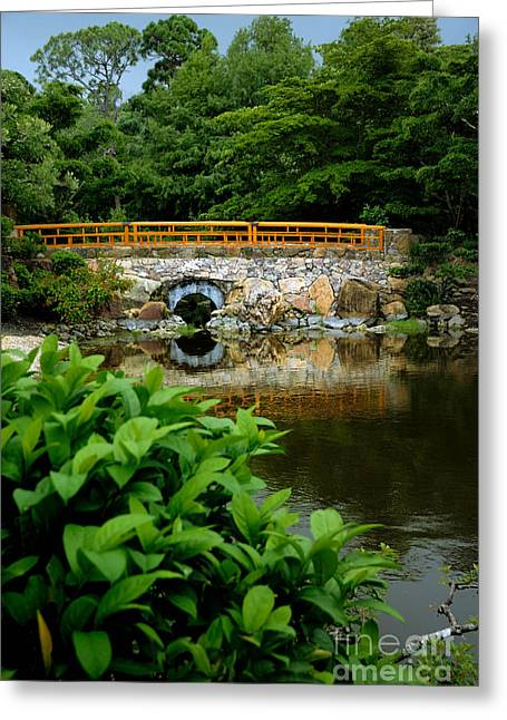 Morikami Japanese Garden And Museum Greeting Card by Amy Cicconi