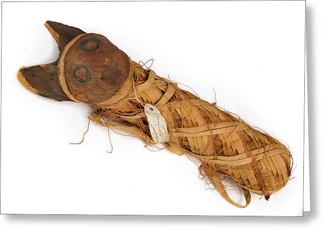 Mummified Cat Greeting Card