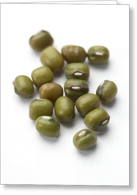 Mung Beans Greeting Card