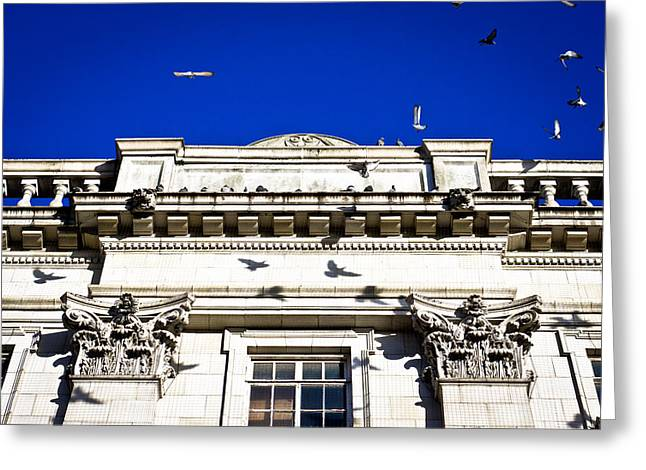 Roman Architecture Greeting Card by Tom Gowanlock