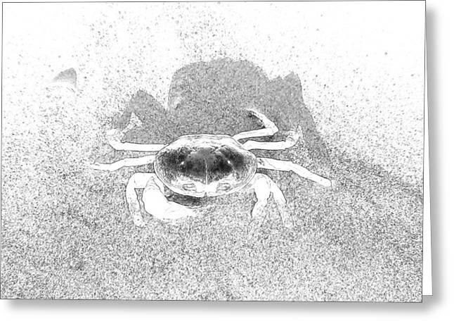Sunning Sand Crab Greeting Card by Joseph Hendrix