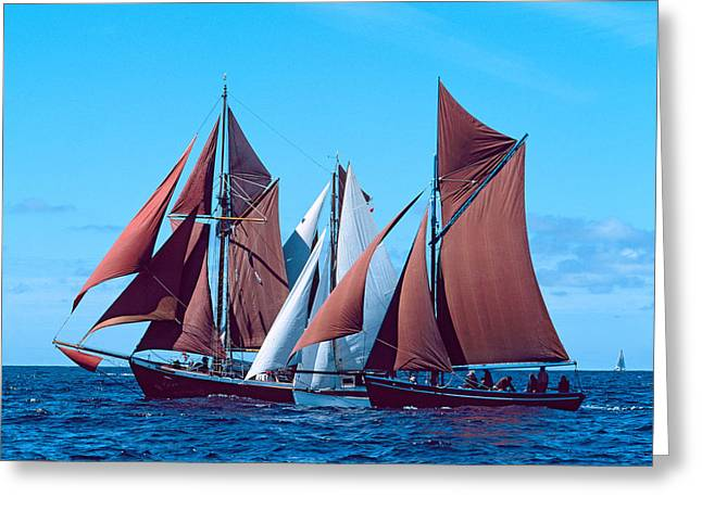 Tall Ship Regatta In The Baie De Greeting Card by Panoramic Images