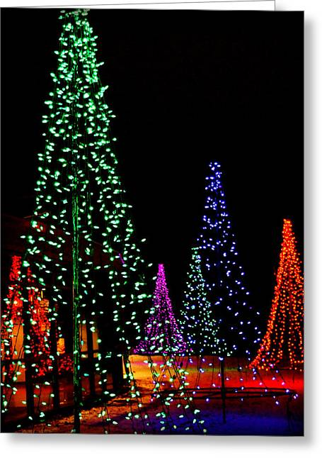 5 Trees And A Reflection Greeting Card
