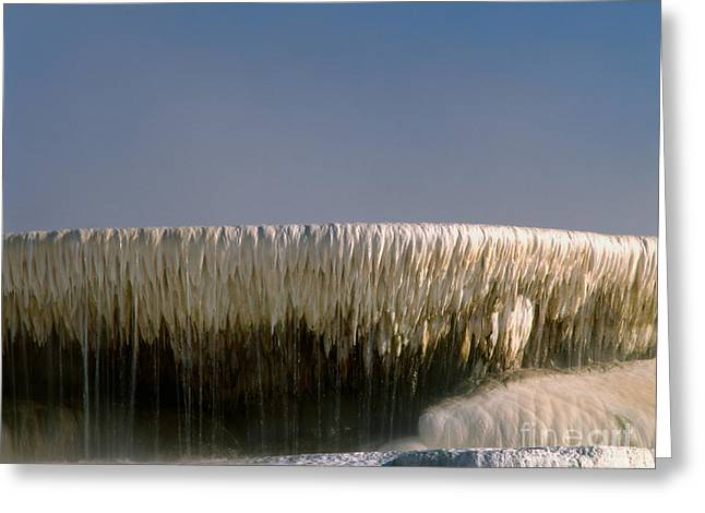Upper Terrace At Mammoth Hot Springs Greeting Card by Tracy Knauer