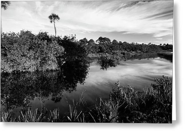 Usa, Florida, Merritt Island National Greeting Card by Adam Jones
