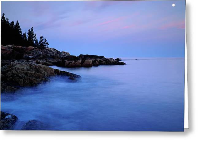 Usa, Maine Acadia National Park Greeting Card by Jaynes Gallery