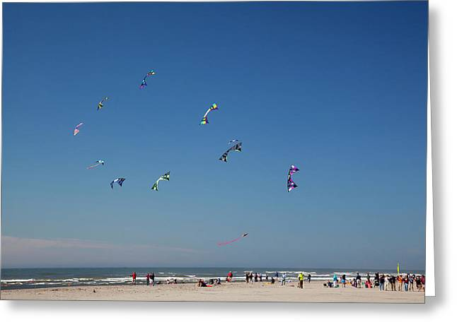 Wa, Long Beach, International Kite Greeting Card