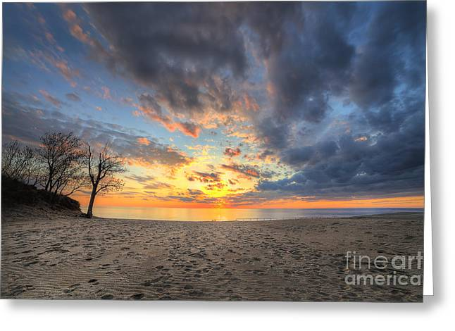 Warren Dunes State Park Greeting Card by Twenty Two North Photography