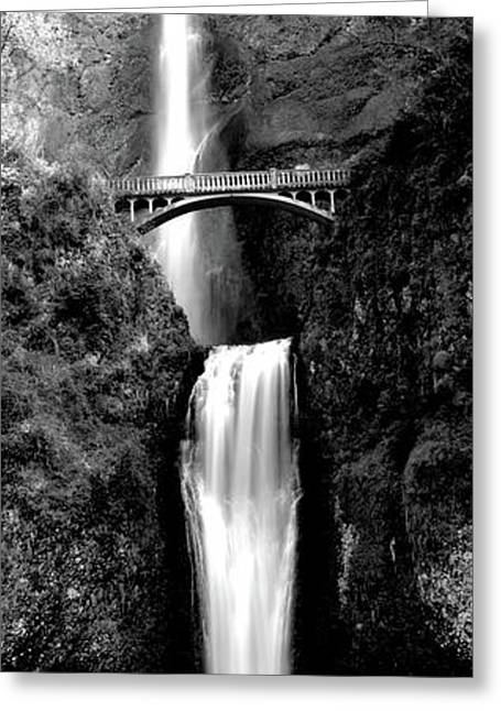 Waterfall In A Forest, Multnomah Falls Greeting Card by Panoramic Images