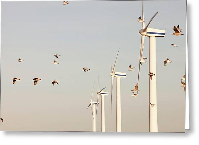 Wind Turbine In Workington Greeting Card by Ashley Cooper