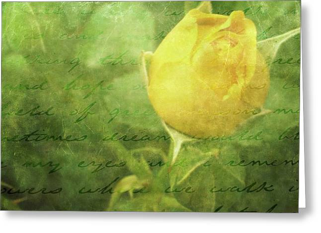 Yellow Rose Greeting Card by Cathie Tyler