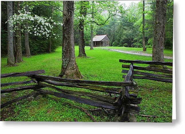 Usa, Tennessee, Great Smoky Mountains Greeting Card by Jaynes Gallery