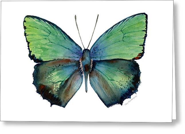 52 Arhopala Aurea Butterfly Greeting Card
