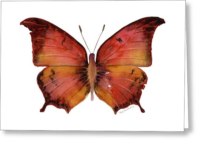 58 Andria Butterfly Greeting Card by Amy Kirkpatrick