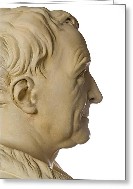 Carl Linnaeus Greeting Card by Natural History Museum, London/science Photo Library