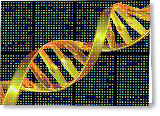 Dna Microarray And Double Helix Greeting Card by Pasieka