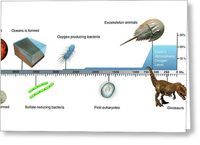 Evolution Of Earth Timeline Greeting Card