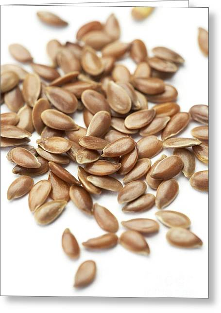 Flax Seeds Greeting Card