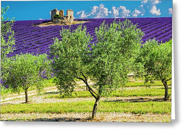 France, Provence, Old Farm House Greeting Card by Terry Eggers