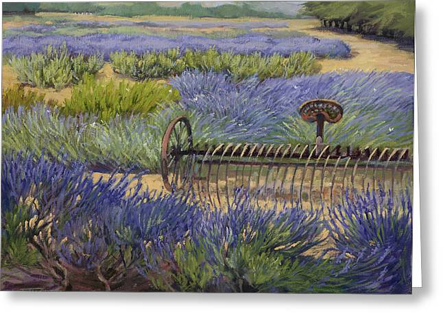 Edge Of The Lavender Field Greeting Card