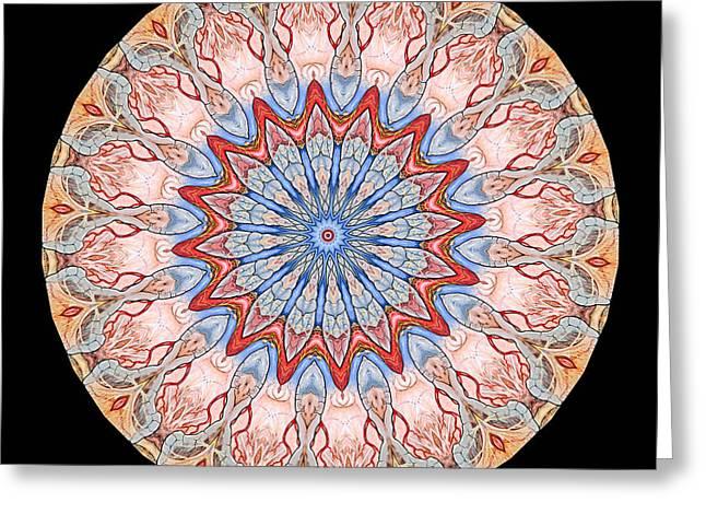 Kaleidoscope Anatomical Illustrations Seriesi Greeting Card
