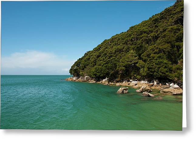 New Zealand, South Island Greeting Card by Lee Foster