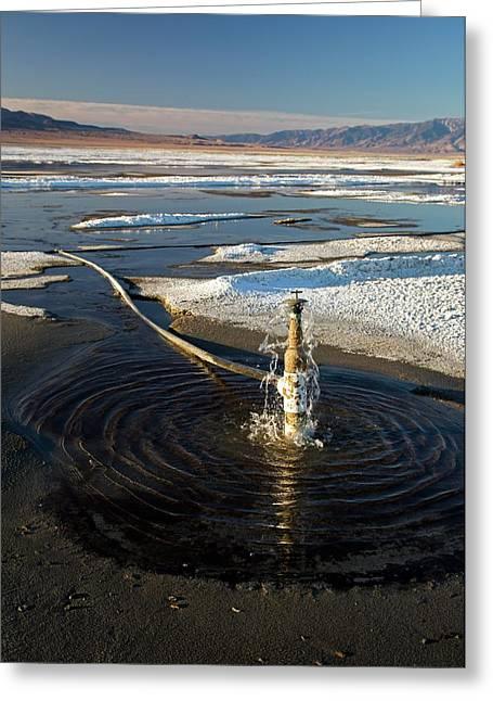 Owens Lake Re-irrigation Greeting Card