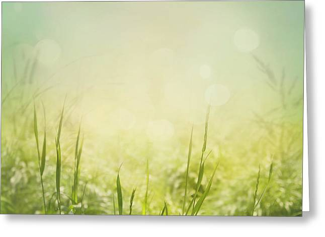 Spring Background Greeting Card by Mythja  Photography