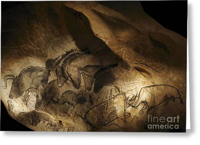 Stone-age Cave Paintings, Lascaux Greeting Card