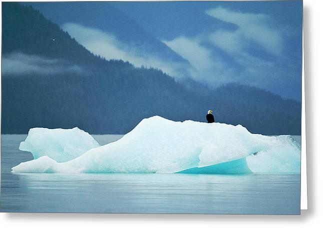 Usa, Alaska, Inside Passage Greeting Card
