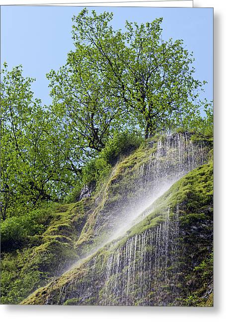 Usa, Oregon, Columbia River Gorge Greeting Card by Jaynes Gallery